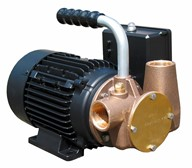 "Utility 40' 1"" self-priming pump"